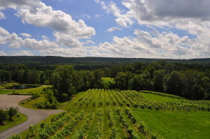 Enjoy the year-round bounty from area vineyards like Six Mile Creek, Ithaca's very own winery. 14850 file photo.