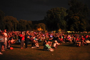 Ithacans enjoy the community fireworks at Stewart Park in 2015. 14850 Photo.