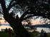 Sunset at Stewart Park. 14850 file photo.